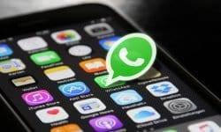 Utiliza WhatsApp en tu negocio
